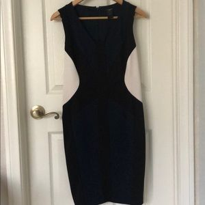 Ann Taylor 3 Toned Fitted Dress